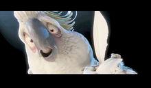 Cacadu furios din animaţia Rio cântă cu vocea românului Mihai Gruia Sandu