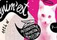 Pisicile, în centrul atenției în acest an la festivalul Anim'est