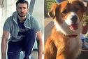 Articol La filmările noii sale pelicule, Gifted, Chris Evans a fost cucerit de un… câine