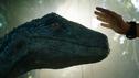 Articol Debut internaţional de 151 milioane de dolari pentru Jurassic World: Fallen Kingdom