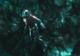 Cum ar putea fi Ant-Man asul din mâneca lui Doctor Strange în Avengers 4