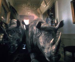 Jumanji: cum faci istorie cu ajutorul efectelor CGI
