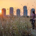 Concurs - Câștigă un loc la  Şcoală de vară: Fotografie urbană pentru începători , oferit de  Fundația Calea Victoriei