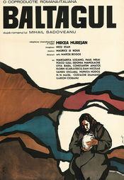 Poster Baltagul