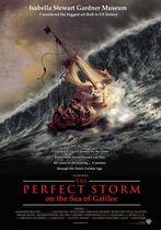 Furtuna perfectă