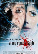 Rețeaua păianjen