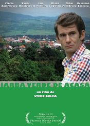 Poster Iarba verde de acasă