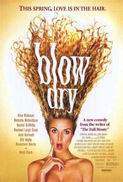 Poster Blow Dry
