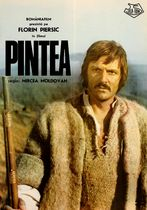 Pintea