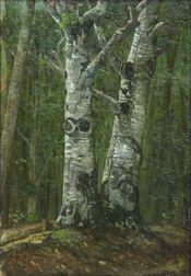 Poster Pădurea de fagi