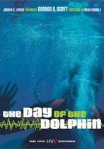 Ziua delfinului