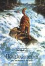Film - Homeward Bound: The Incredible Journey