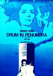 Poster Drum în penumbră