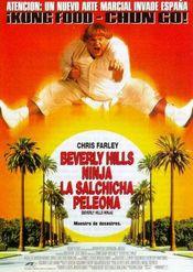 Poster Beverly Hills Ninja