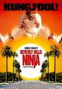 Film - Beverly Hills Ninja