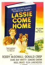 Lassie se intoarce acasa