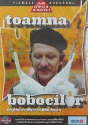 Poster Toamna bobocilor