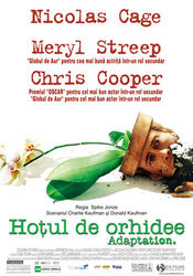 Poster Adaptation.