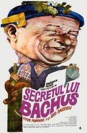 Poster Secretul lui Bachus