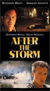 Poster After the Storm