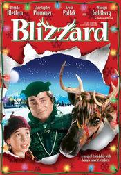 Poster Blizzard