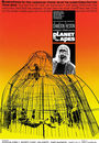 Film - Planet of the Apes