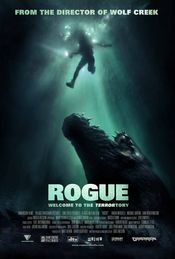 Poster Rogue