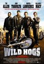 Film - Wild Hogs