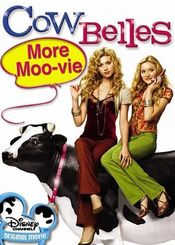 Poster Cow Belles