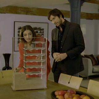 The Mistress of Spices - Stăpâna mirodeniilor (2005 ...