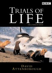 Poster The Trials of Life
