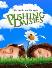 Poster Pushing Daisies