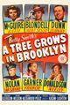 Film - A Tree Grows in Brooklyn