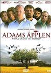 Merele lui Adam