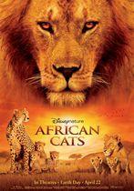 Feline africane