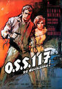 Film - OSS 117 se déchaîne