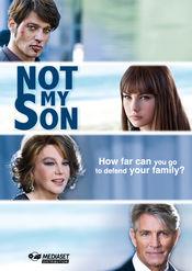 Poster Non è stato mio figlio