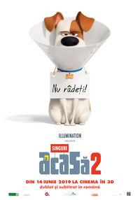 Poster SINGURI ACASA 2 - 3D