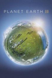 Poster Planet Earth II