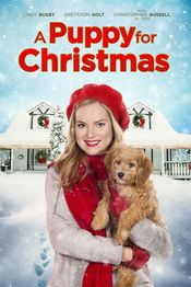 Poster A Puppy for Christmas