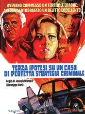 Poster Terza ipotesi su un caso di perfetta strategia criminale