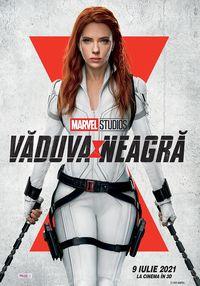 Poster VADUVA NEAGRA