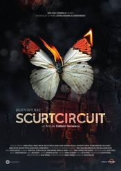 Poster Scurtcircuit
