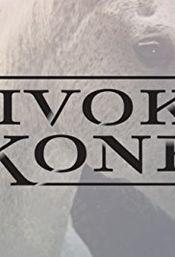 Poster Divoké kone