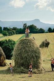 Poster Fâneţe montane: rezerve de biodiversitate și cultură tradițională