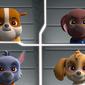 Paw Patrol: Ready, Race, Rescue!/Patrula cățelușilor