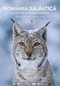 Poster ROMANIA SALBATICA