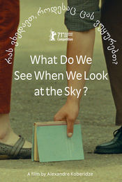 Poster What Do We See When We Look at the Sky?
