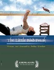 Poster The Little Bird Boy