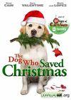 De pază de Crăciun - Un câine pus pe treabă
